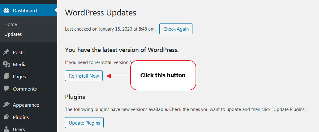 Actualizando WordPress