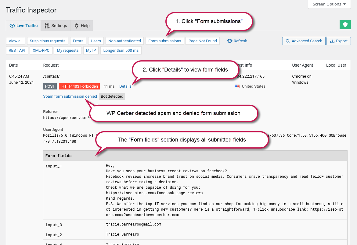 Viewing submitted form fields in the WordPress traffic log